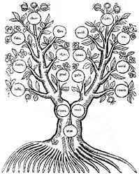 Représenter et organiser la connaissance - arbre connaissance