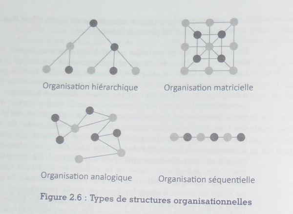 Types de structures organisationnelles