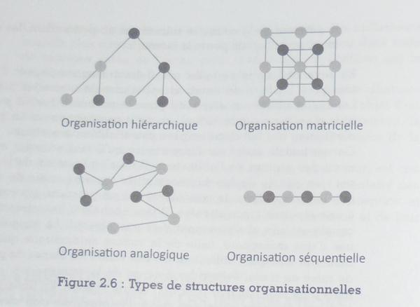 Types de structures organisationnelles