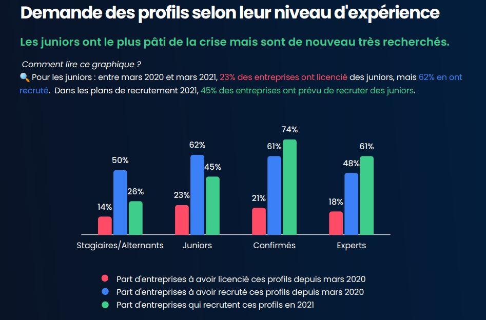 Demande des profils de développeur web selon leur niveau d'expérience